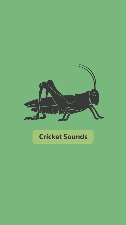 Cricket Sounds