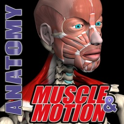 Muscle and Motion Anatomy