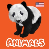 Codes for Animals & Animal Sounds Kids Toddlers Zoo App US-F Hack