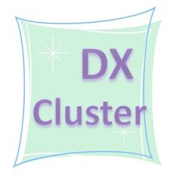 WW DXCluster View