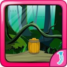 Activities of Escape Game Lynx Wildcat