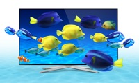 Aquarium HD TV