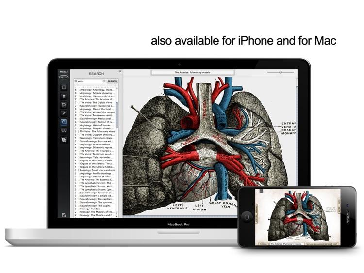 Gray's Anatomy Premium for iPad screenshot-4