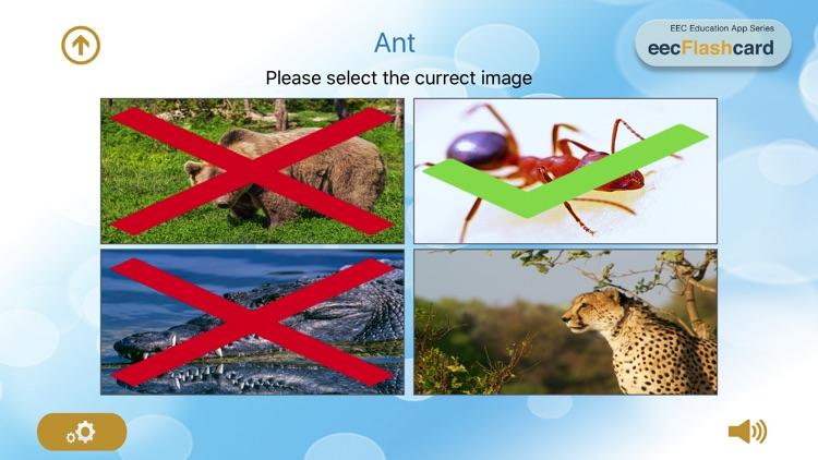 eecFlashcard: Australian Early Learning Flashcards screenshot-4