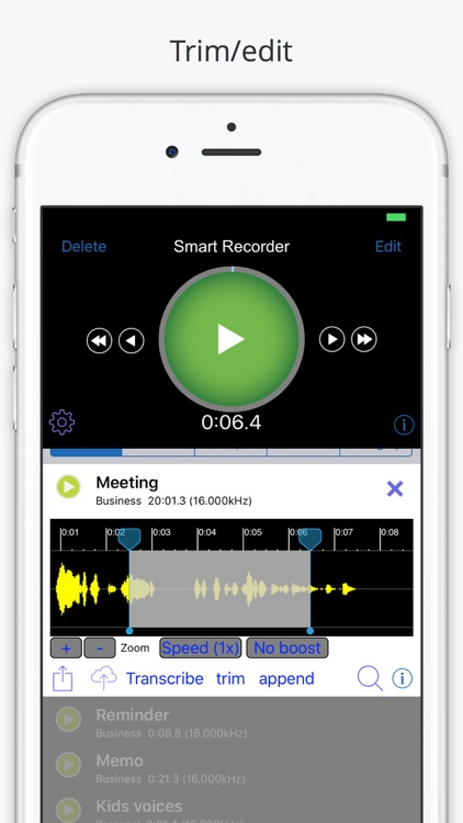 Smart Recorder Transcriber AF screenshot-3
