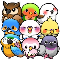 BirdLife -Cute Bird Game-