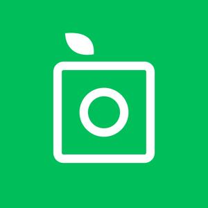 PlantSnap - Identify plants in a snap! app