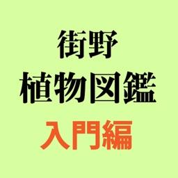 街野植物図鑑入門編 (jpflora300)