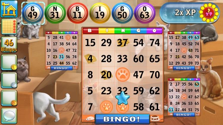 Bingo Cats screenshot-3
