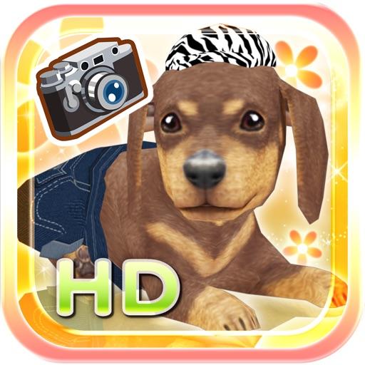 My Dog My Room HD Premium