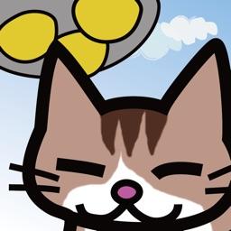 Cat Raid