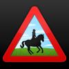 Horse Rider SOS