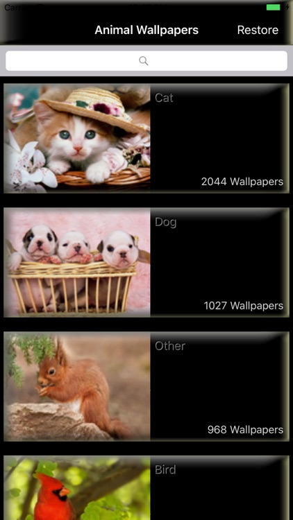 Animal Pictures - Animal Wallpaper and Backgrounds