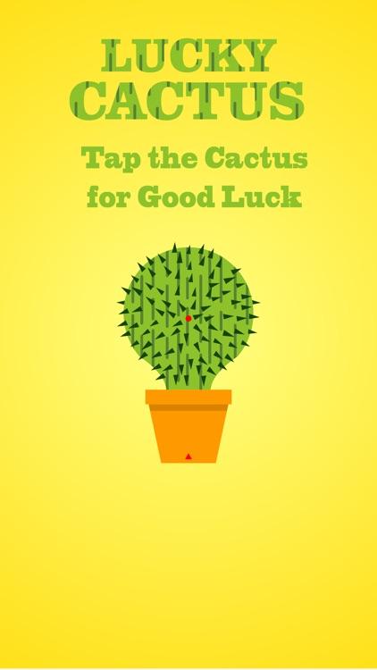 Lucky Cactus