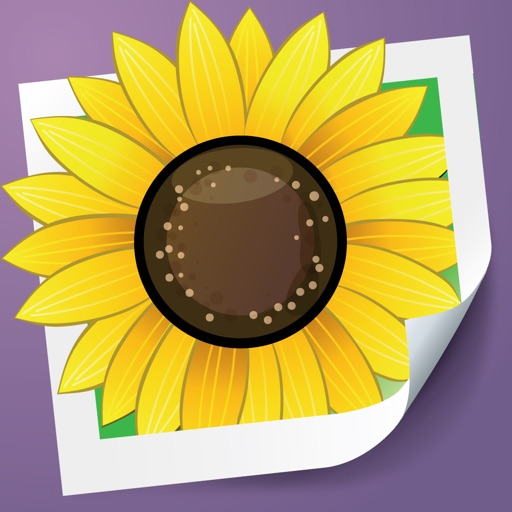 Photo Adjust Pro - enhance and retouch dark images app logo