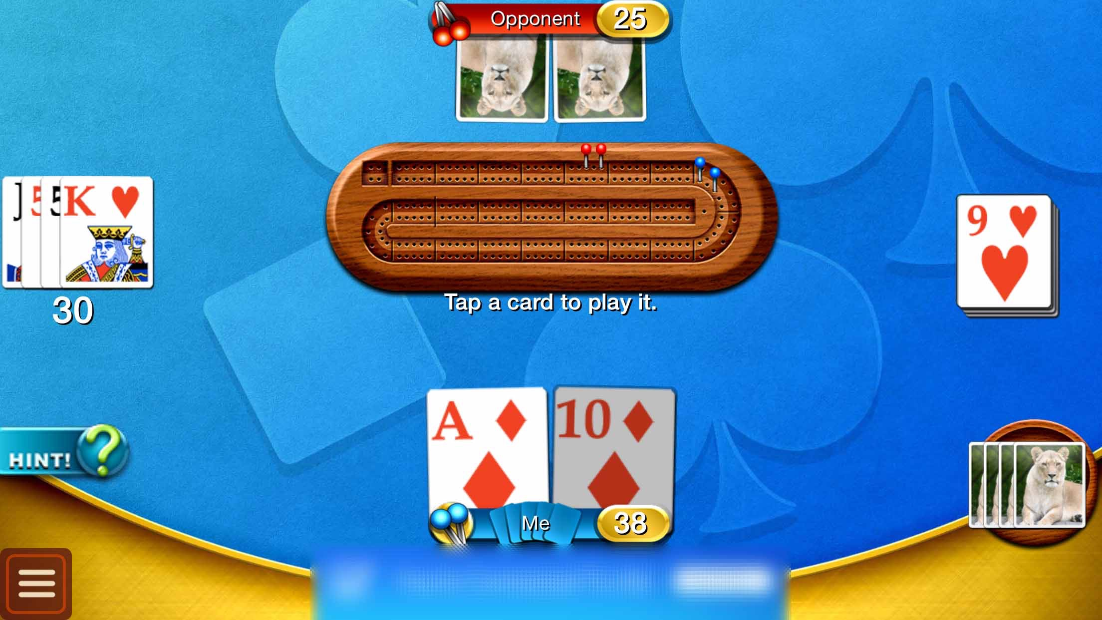 Cribbage - Family Crib & Peg Game Screenshot