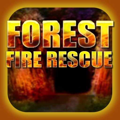 Can You Escape From The Fire Forest ?