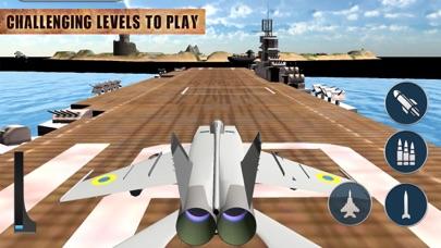 Real Jet Flying Pilot