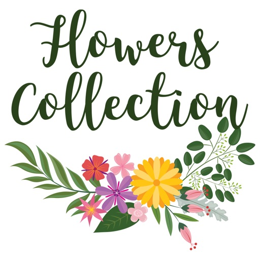 Flowers Collection