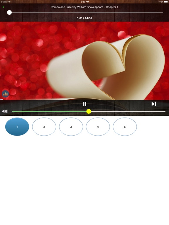 SayingBooks Pro - AudioBooks of Life Screenshots