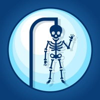 Codes for Ultimate Anatomy Hangman Hack