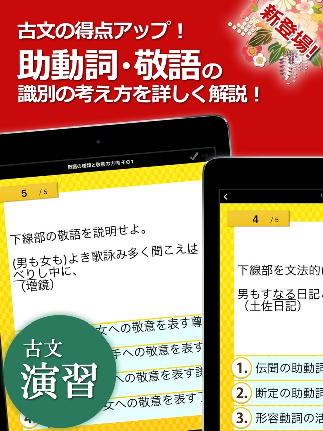 古文・漢文(古文単語、古典文法、漢文) Screenshot