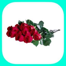 Цветы и Букеты - Стикеры