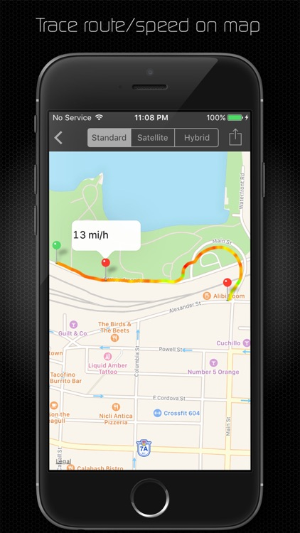 NavCam  (Professional HD Dashcam) screenshot-3