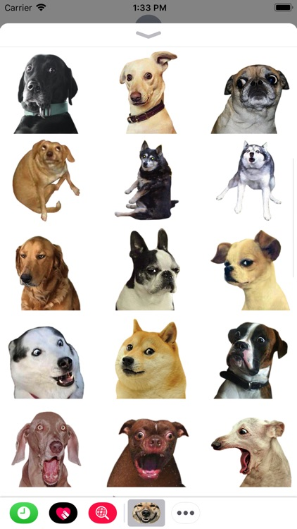 Funny Doge Animated Stickers