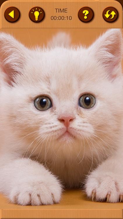Cat Kitten Jigsaw Puzzle Games screenshot-6
