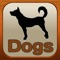 Dog owners and breeders will find this tool valuable in learning about both breeds and medical conditions