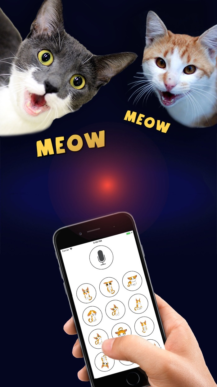 Human to Cat Translator Screenshot