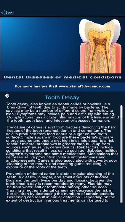 My Dental Anatomy screenshot-4