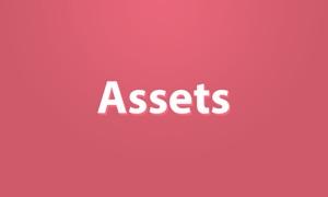 Assets Native
