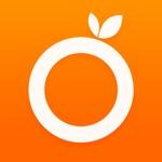桔子浏览器-安全上网的手机浏览器