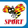 SportExpressen—VM 2018, Hockey