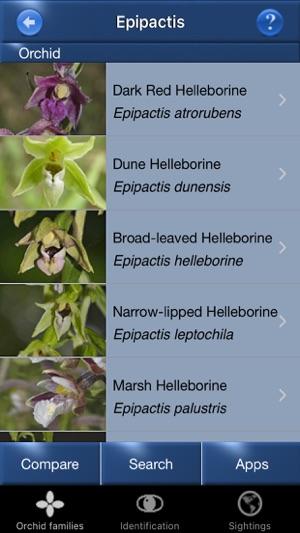 Sunbird Plant Box UK - Tree Id, Flower Id, Orchid Id, Winter Tree Id ...
