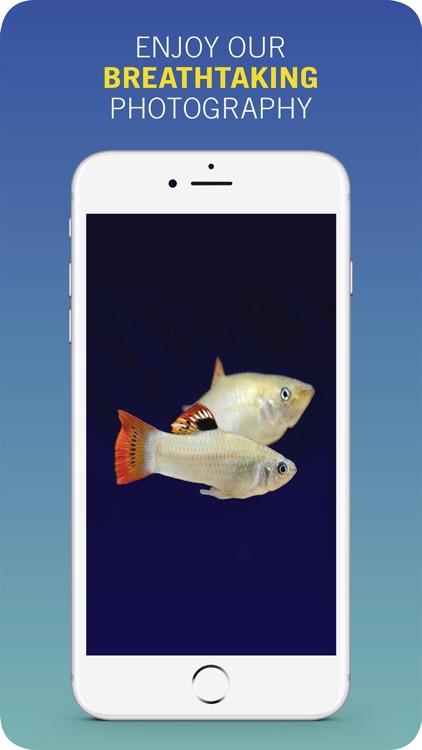 PFK: Practical Fishkeeping screenshot-3