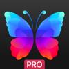 Everpix Pro - HD Wallpapers - Robert Snopov