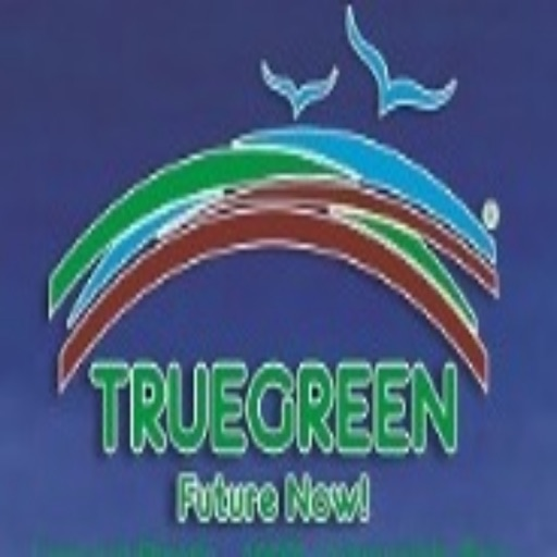 True Green Cup icon