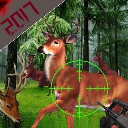 Big Buck Deer Hunting