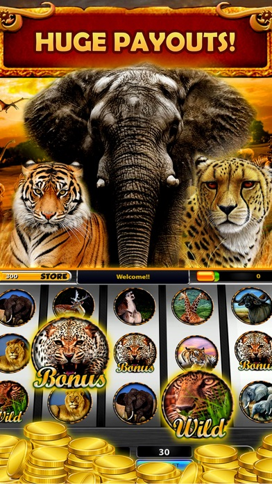 Safari Sundown Slots Casino