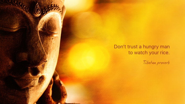 Wisdom of Buddha screenshot-3