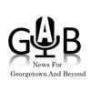 Salim Sindhi - Gab News アートワーク