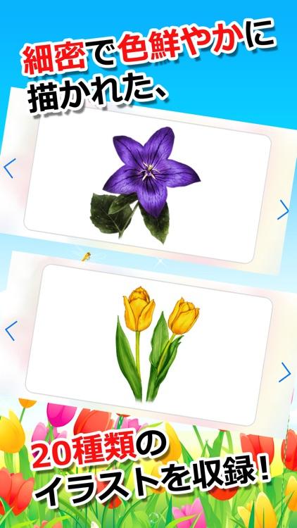 みんなの花カード