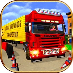 Truck Parking Simulator.
