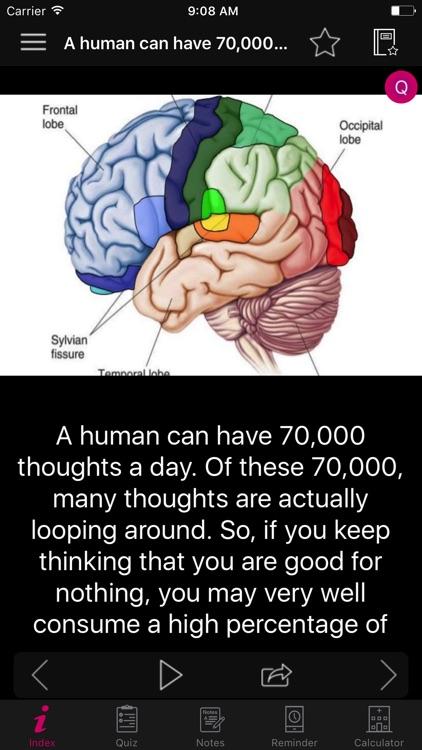 Human Brain Facts & Quiz 2000 screenshot-3