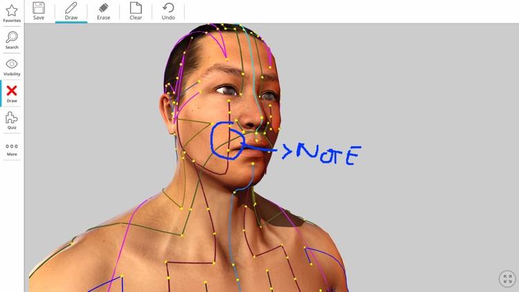 Visual Acupuncture 3D screenshot-5