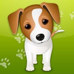 Dog Whistle & Dog Trainer