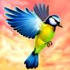 Bird Fly High 3D Simulator